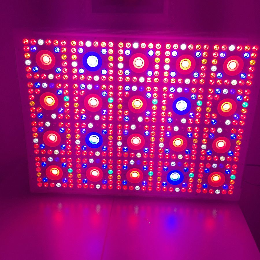 Check Out This Product On Alibaba Com App Wholesale Farm Garden House Programmable Full Spectrum 600 Watt 1000 Watt 12 Led Grow Lights Grow Lights Farm Gardens