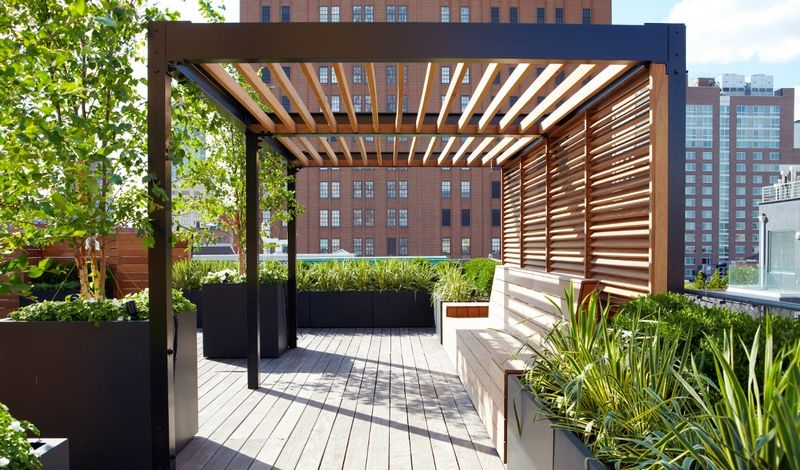 pergola bois moderne pour le toit-terrasse en ville avec plantes vertes