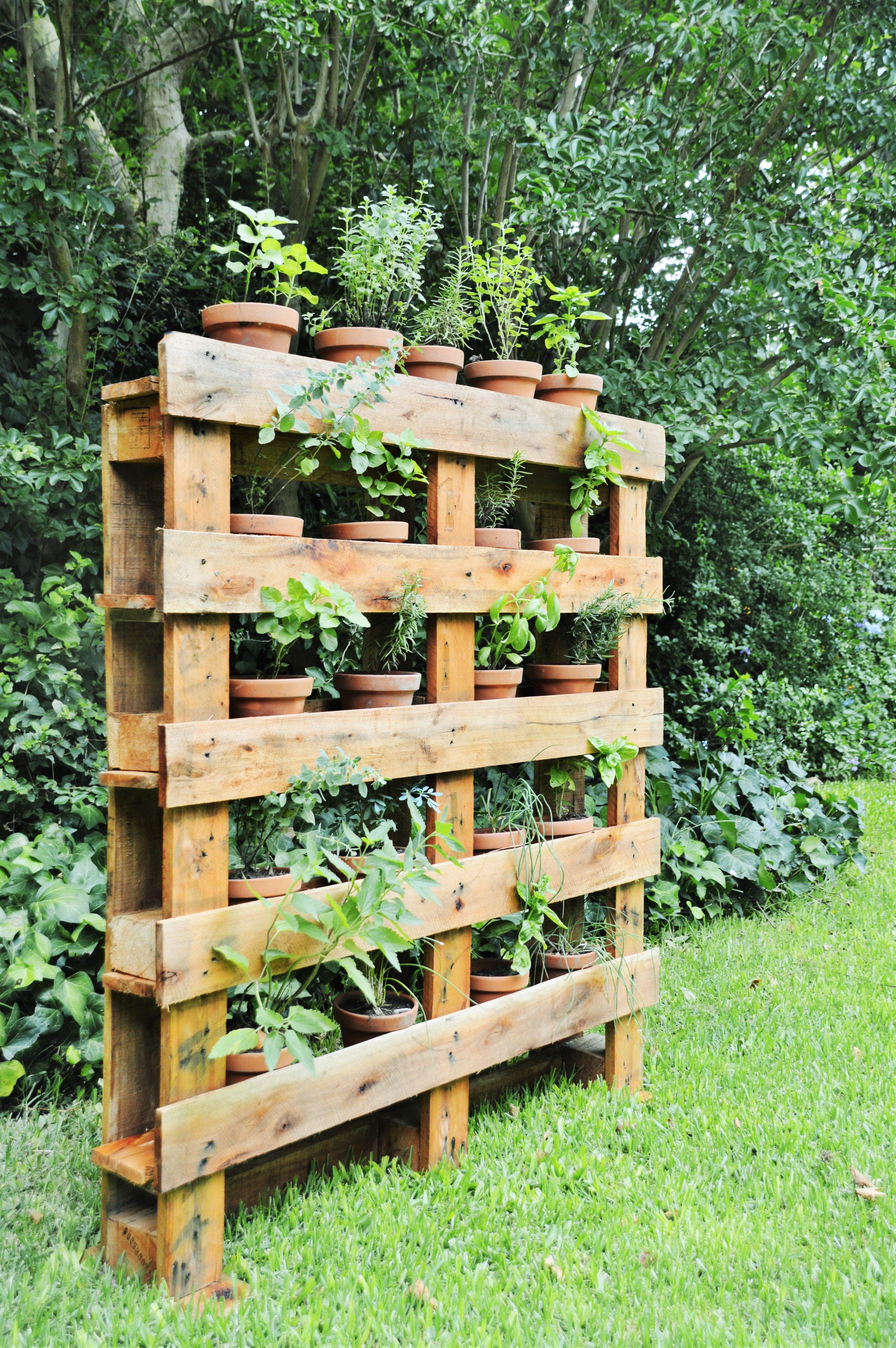 huerta vertical de especias hecha a partir de pallets