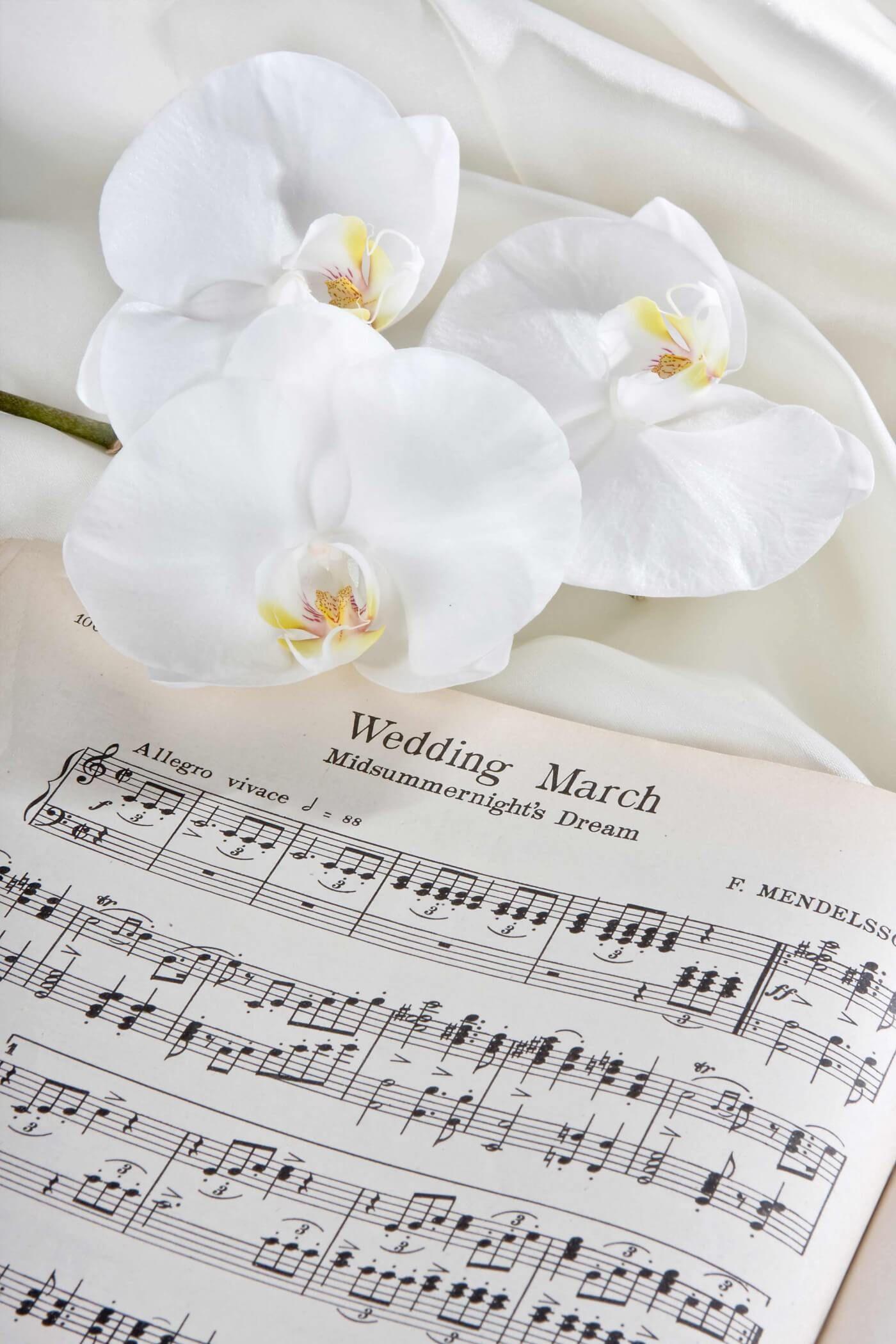 Romantik Garantiert Mit Diesen 10 Liedern Sorgt Ihr In Der