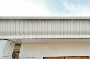 Check Out Our Internet Site For A Lot More About This Impressive Gutters Drainage Ideas Guttersdrainageideas In 2020 Gutters Downspout Tiger Stripes