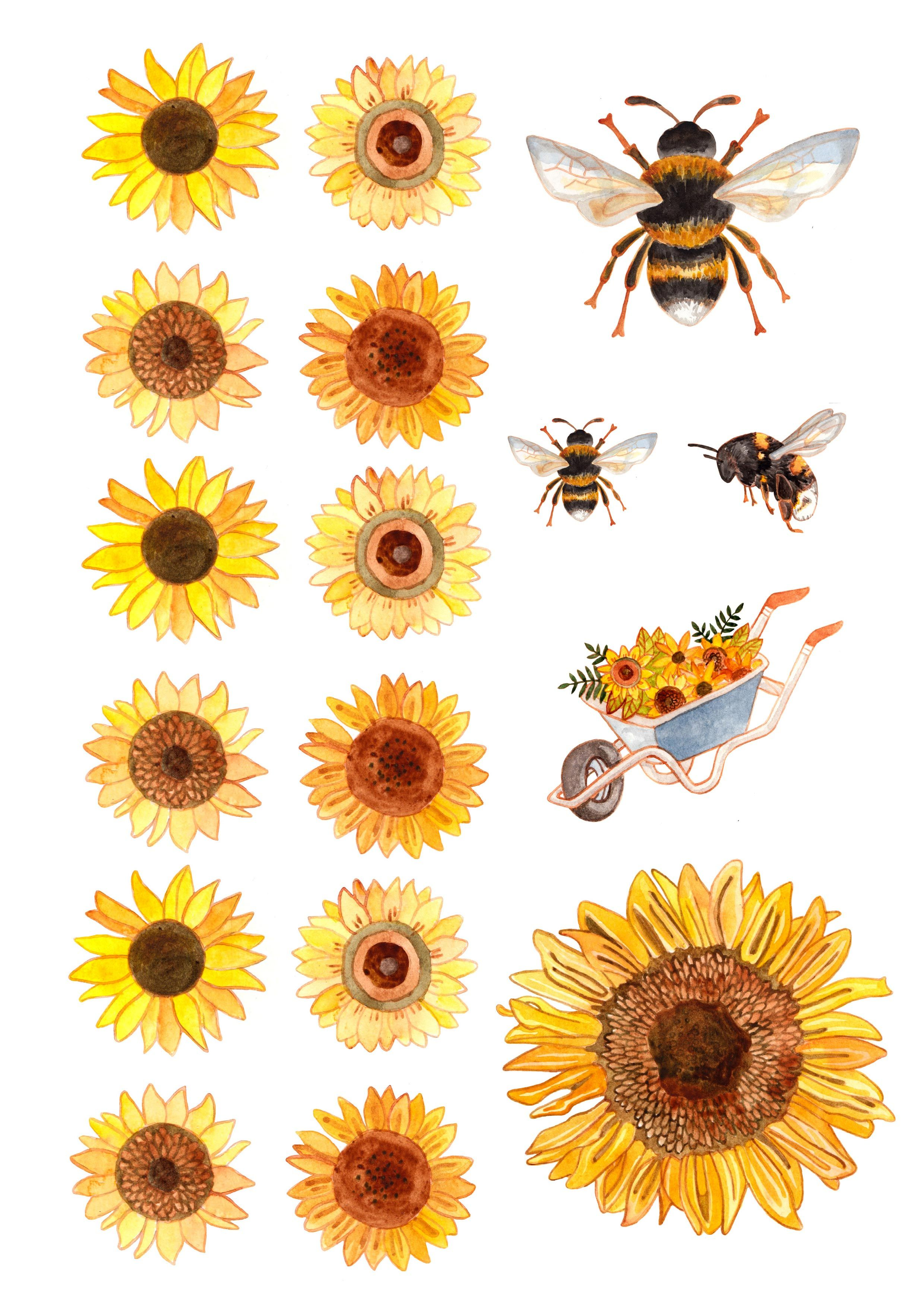 Free Sunflower And Bee Printables Bee Painting Sunflower Art Bee Printables