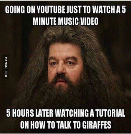Must See Imagery Youtube Hole Giraffes Harry Potter Memes Hilarious Funny Pictures Me As A Girlfriend