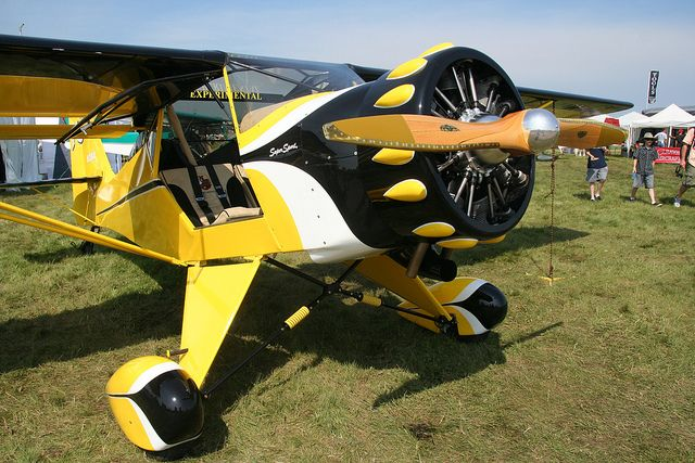 The Kitfox S7 with the Rotec Radial   I could easily be talked into