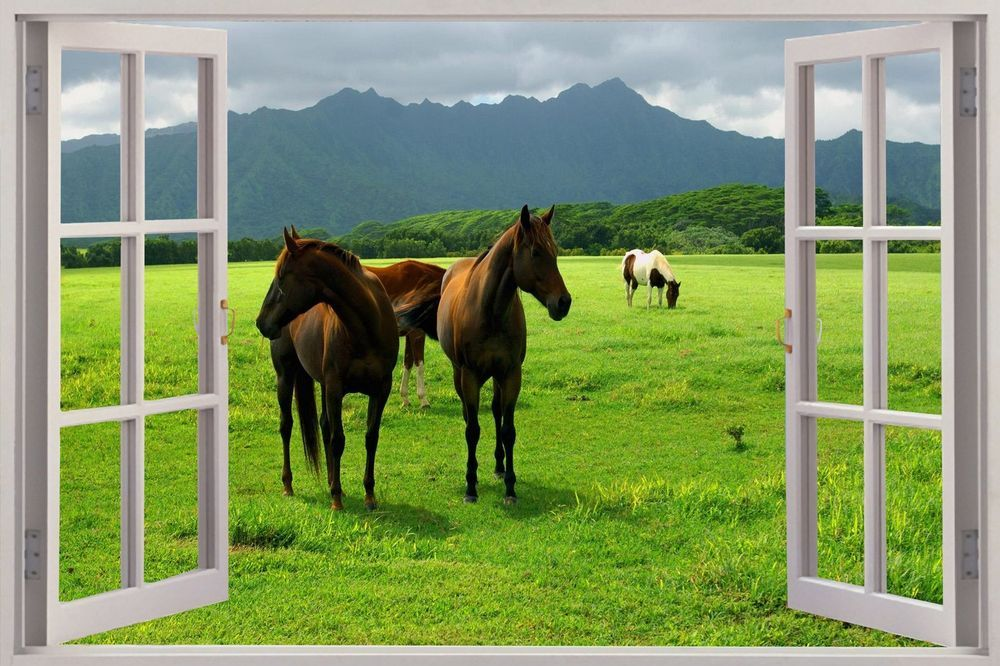 Huge 3D Window Wild Horses Grazing View Wall Stickers