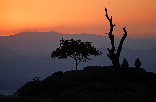 Africa....