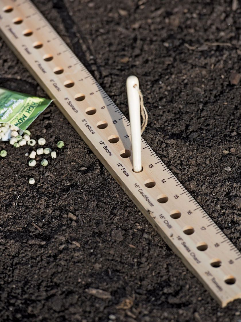 Intervale Seed And Plant Spacing Ruler Gardener S Supply