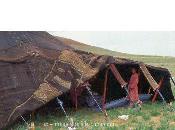 Berber Tent for photoshoot  sc 1 st  Pinterest & Berber Tent for photoshoot | Tents - Bedouin incl patterns ...