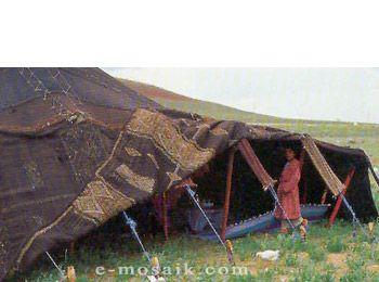 Berber Tent for photoshoot  sc 1 st  Pinterest & Berber Tent for photoshoot | Tents - Bedouin incl patterns ...