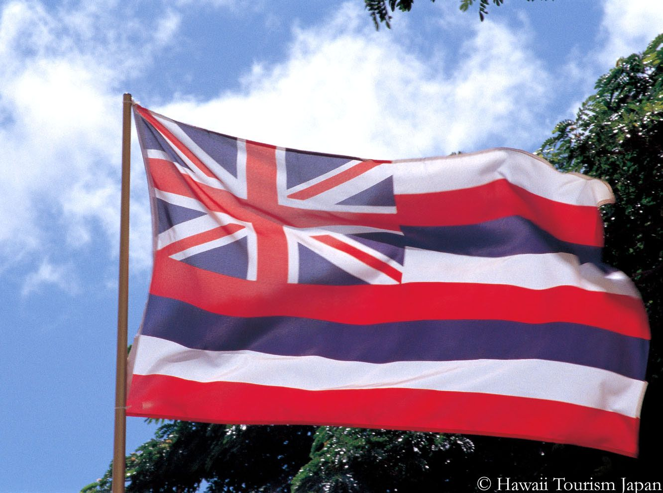 What S The Story Behind Hawaii S Flag Hawaii Flag Hawaiian Flag Hawaii State Flag