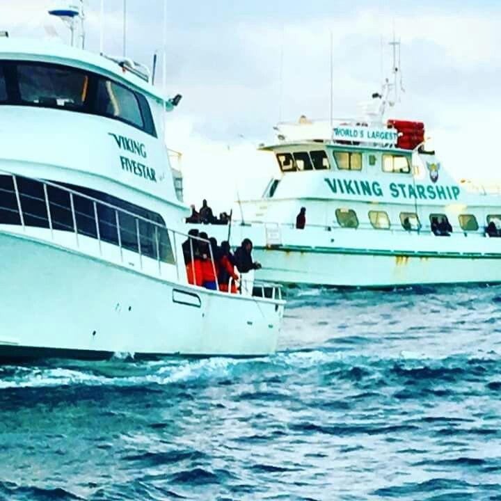 long island boat rentals port washington ny