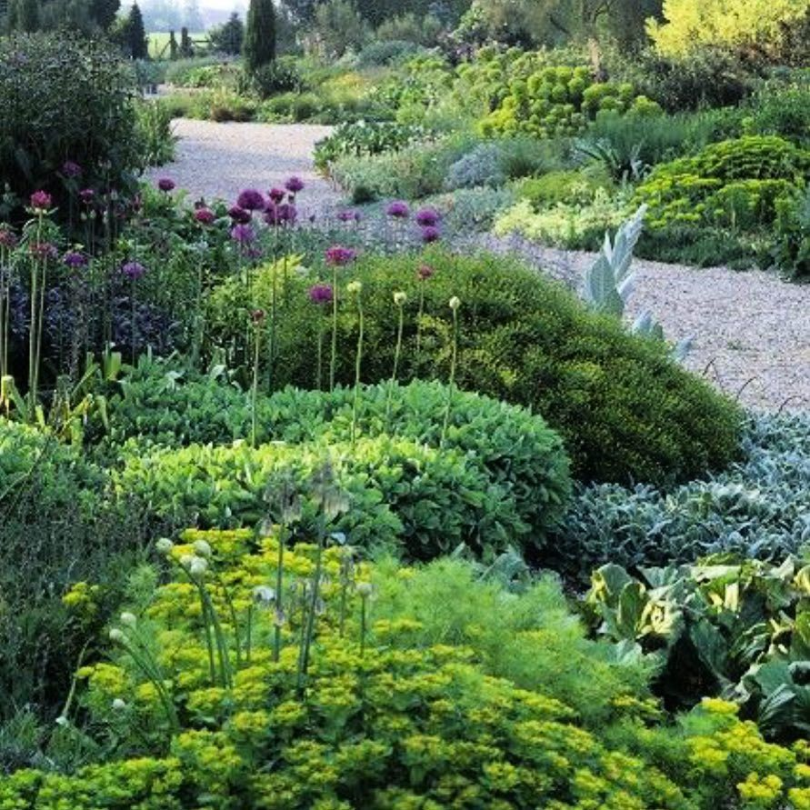 This Is A Lovely View Of Beth Chatto S Gravel Garden In