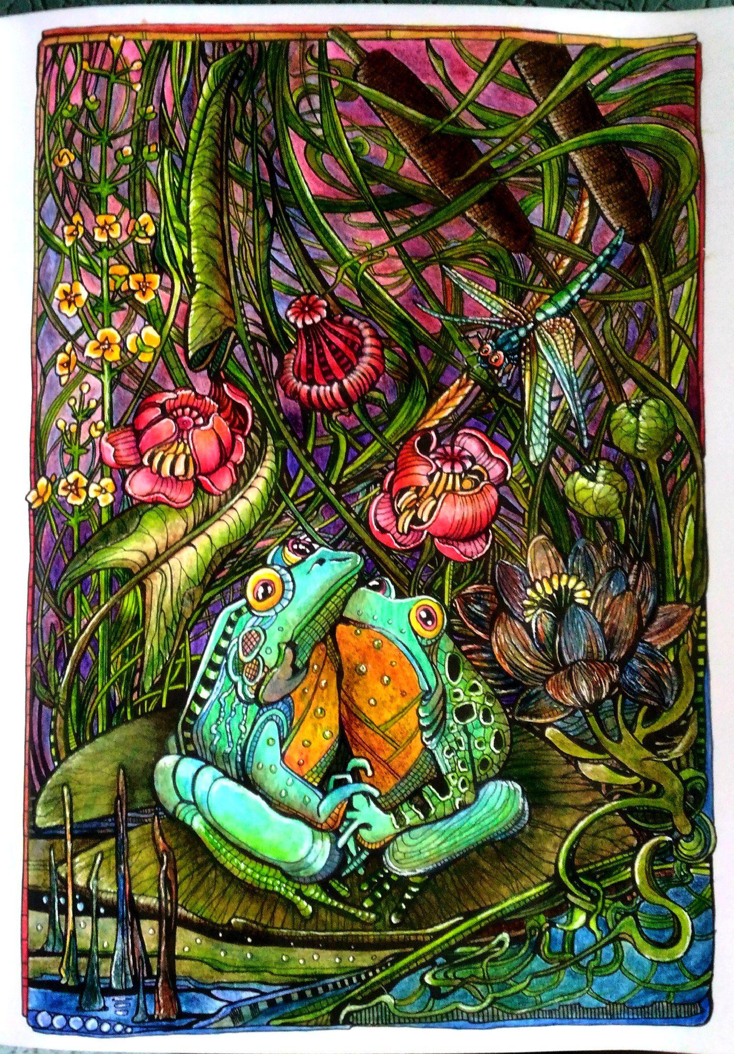 Мания Ботаника в 2019 г. | Раскраски, Рисунки и Ботаника