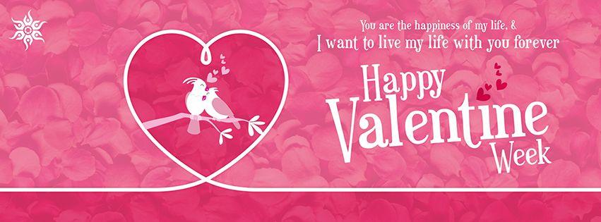 Image result for valentine week week banner