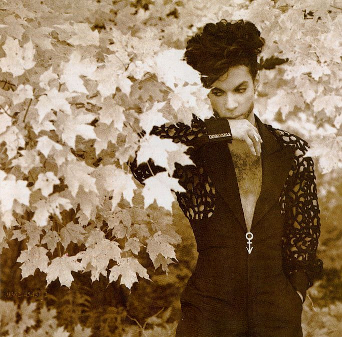 Classic Prince | 1993-94 The Hits - Herb Ritts portrait from