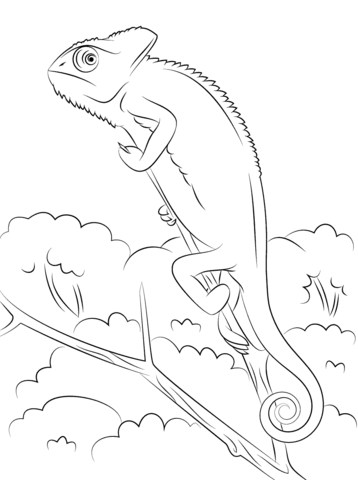 Veiled Chameleon Coloring Page From Chameleon Category Select From 25105 Printable Crafts Of Cartoons N Coloring Pages Veiled Chameleon Animal Coloring Pages