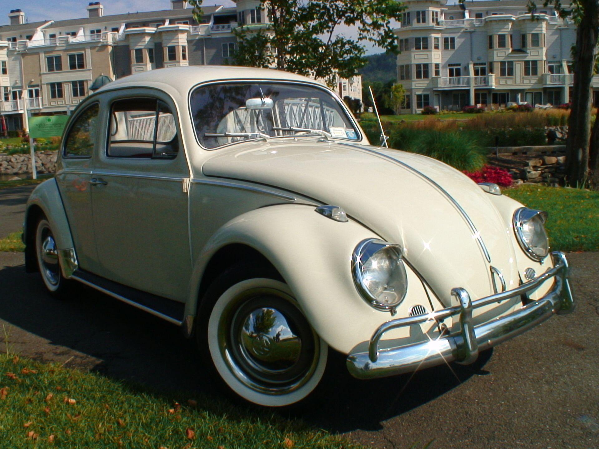 vw bugs classic 1963 vw beetle bug sedan classic vw beetles bugs volkswagen punch. Black Bedroom Furniture Sets. Home Design Ideas