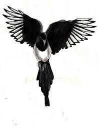 Image Result For Magpie Elster Drawing Painting Picture Elster Ideen Furs Zeichnen Tiere