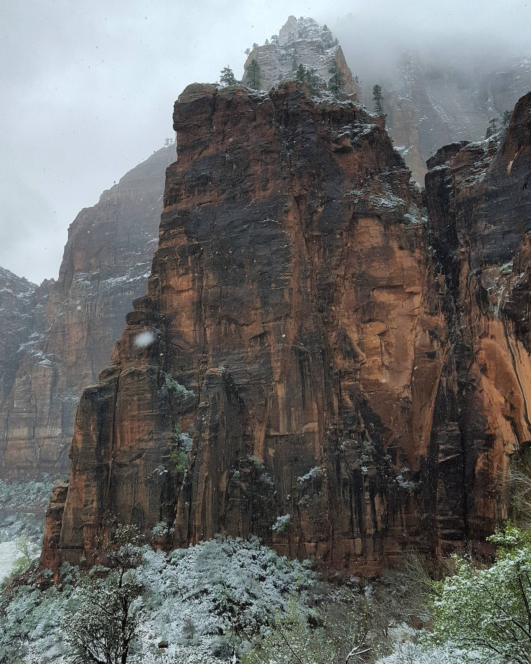 Snow At Zion National Park Os 3130 1836 Reddit Zion National