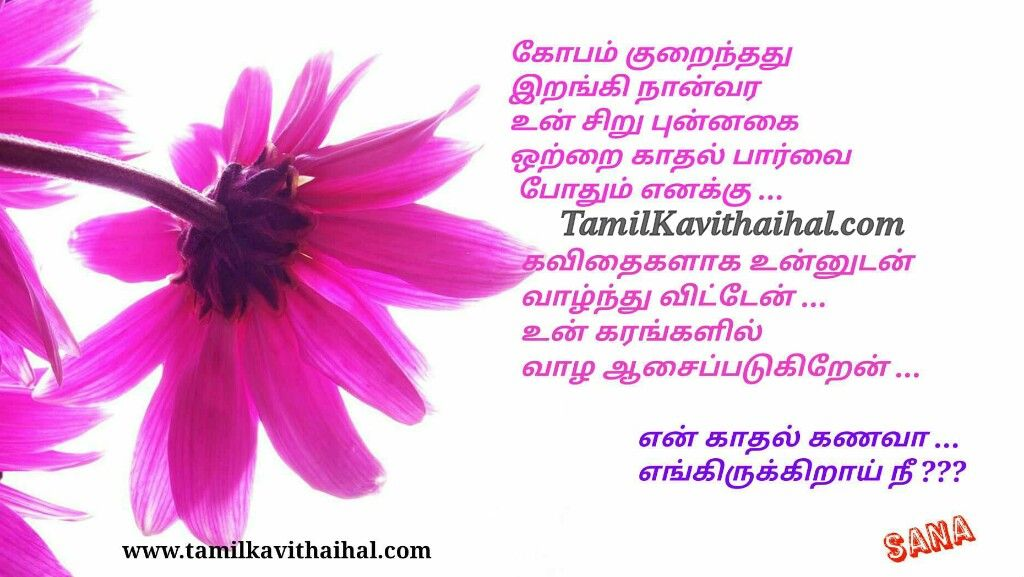 Latest Tamil Kavithaigal Quotes Poems About Amma Appa Husband Wife Kulanthai Nanban Frie Wedding Day Wishes Wishes For Husband Birthday Wish For Husband