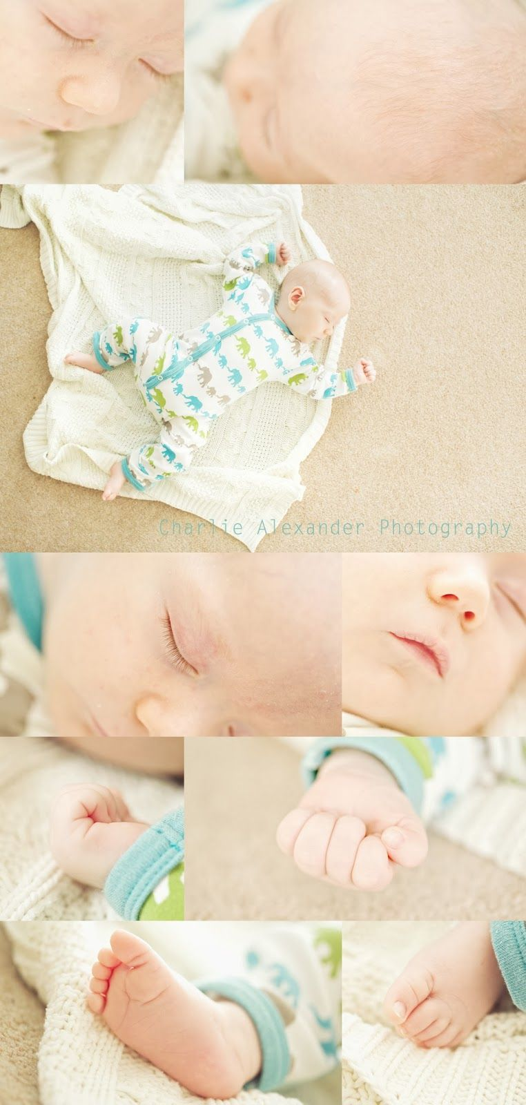 Bow through a macro macro baby newborn collage 100mm face hands feet details