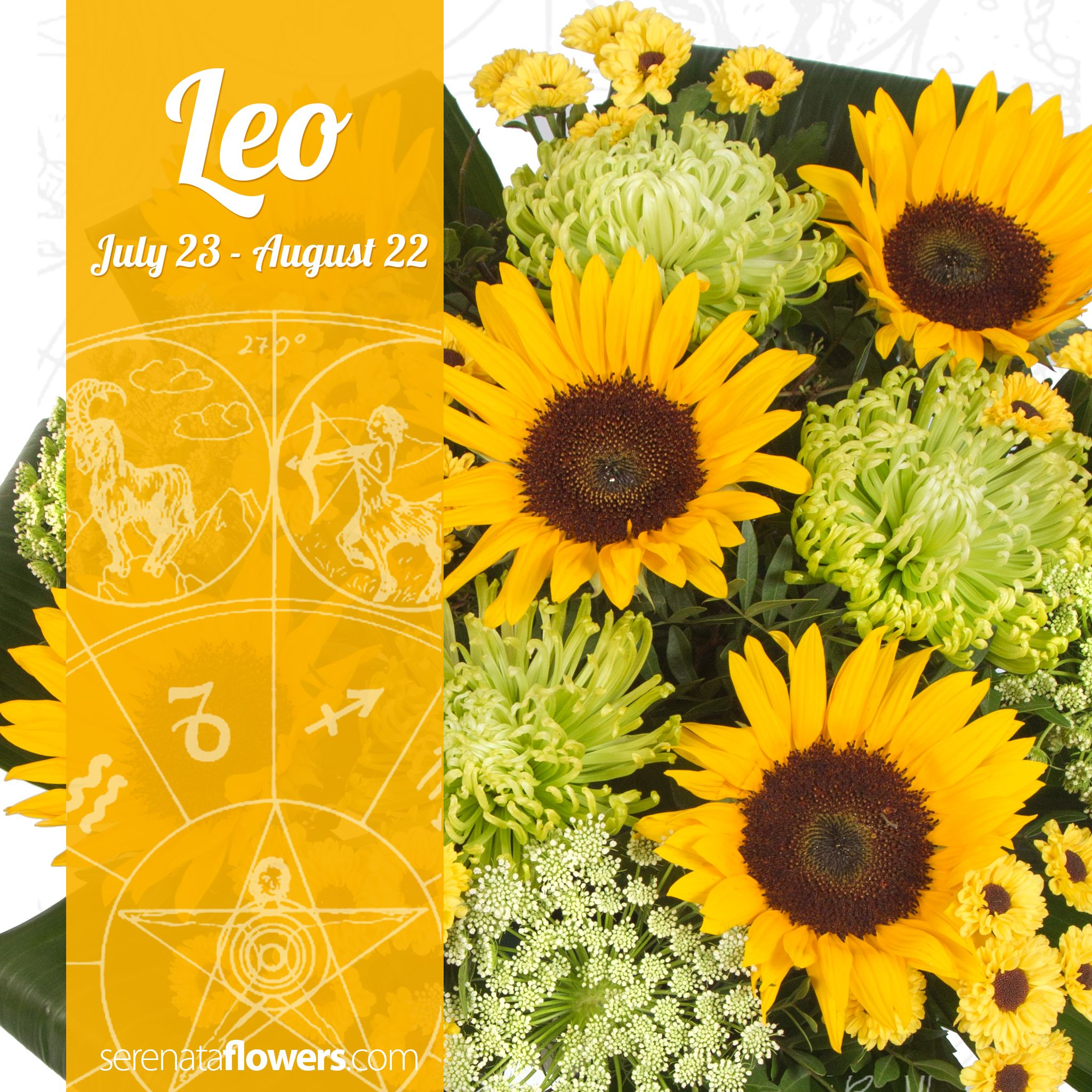 Those Born Under The Sign Of Leo Are Said To Love Fun And Are Especially Creative Or Love Creative Things Such As Da Birth Flowers Sunflower Delivery Sunflower