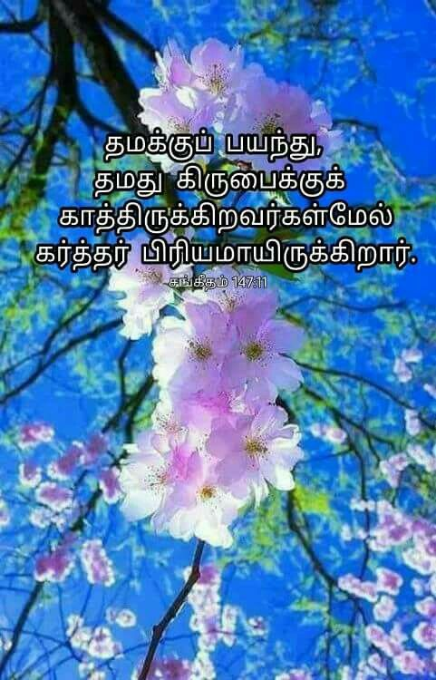 Pin by malar tr on bible verses with images in tamil pinterest bible quotes bible verses scriptures yeshua jesus gods timing spiritual gifts natural phenomena christian living jesus loves negle Images
