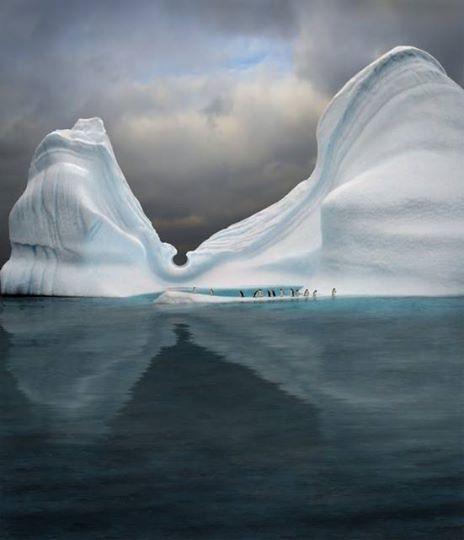 An iceberg is swimming pool for penguins in Antarctica.