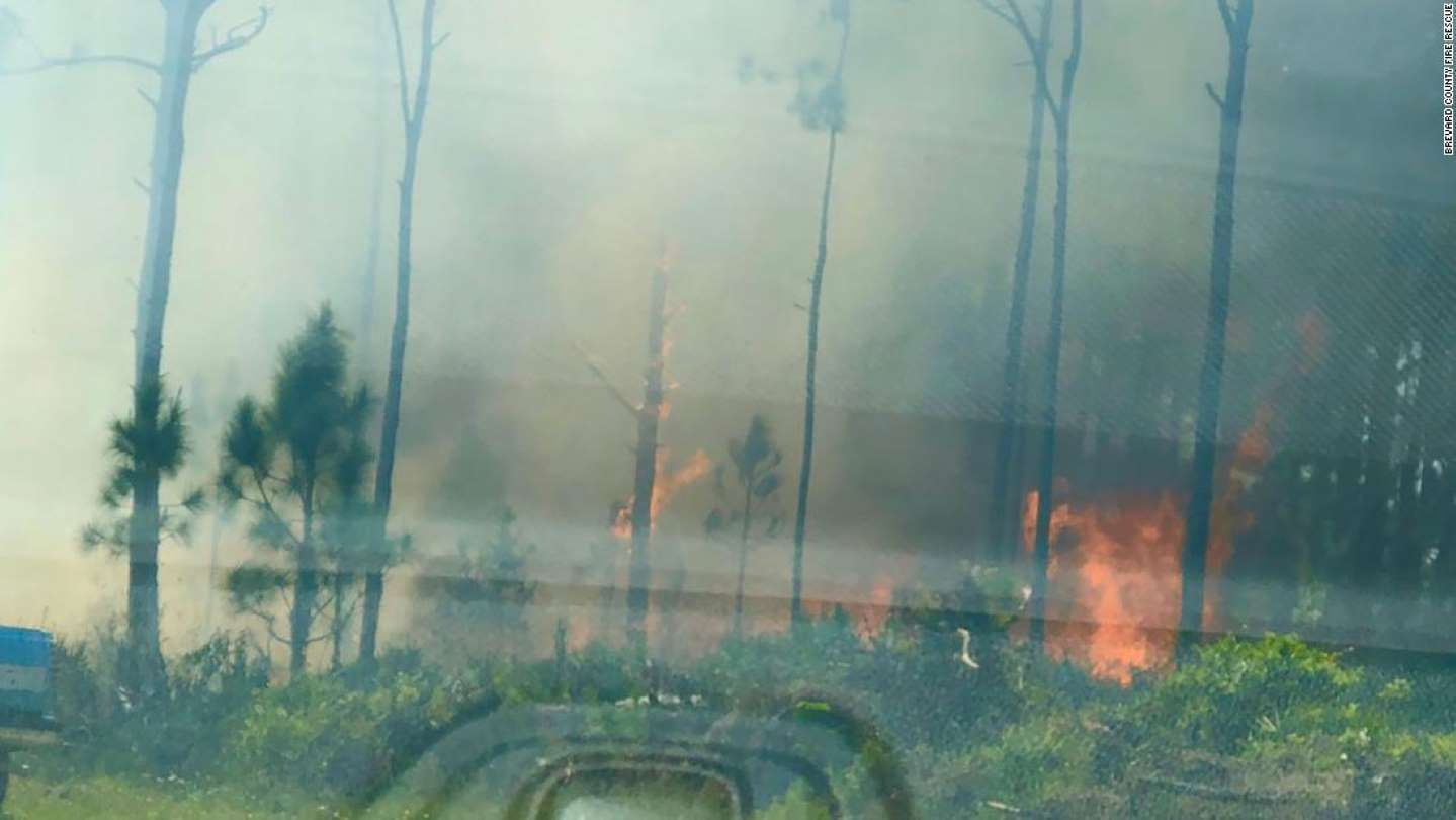 A Gender Reveal Party Ignited A 10 Acre Brush Fire In Florida Fire Officials Say Reveal Parties Gender Reveal Party Gender Reveal
