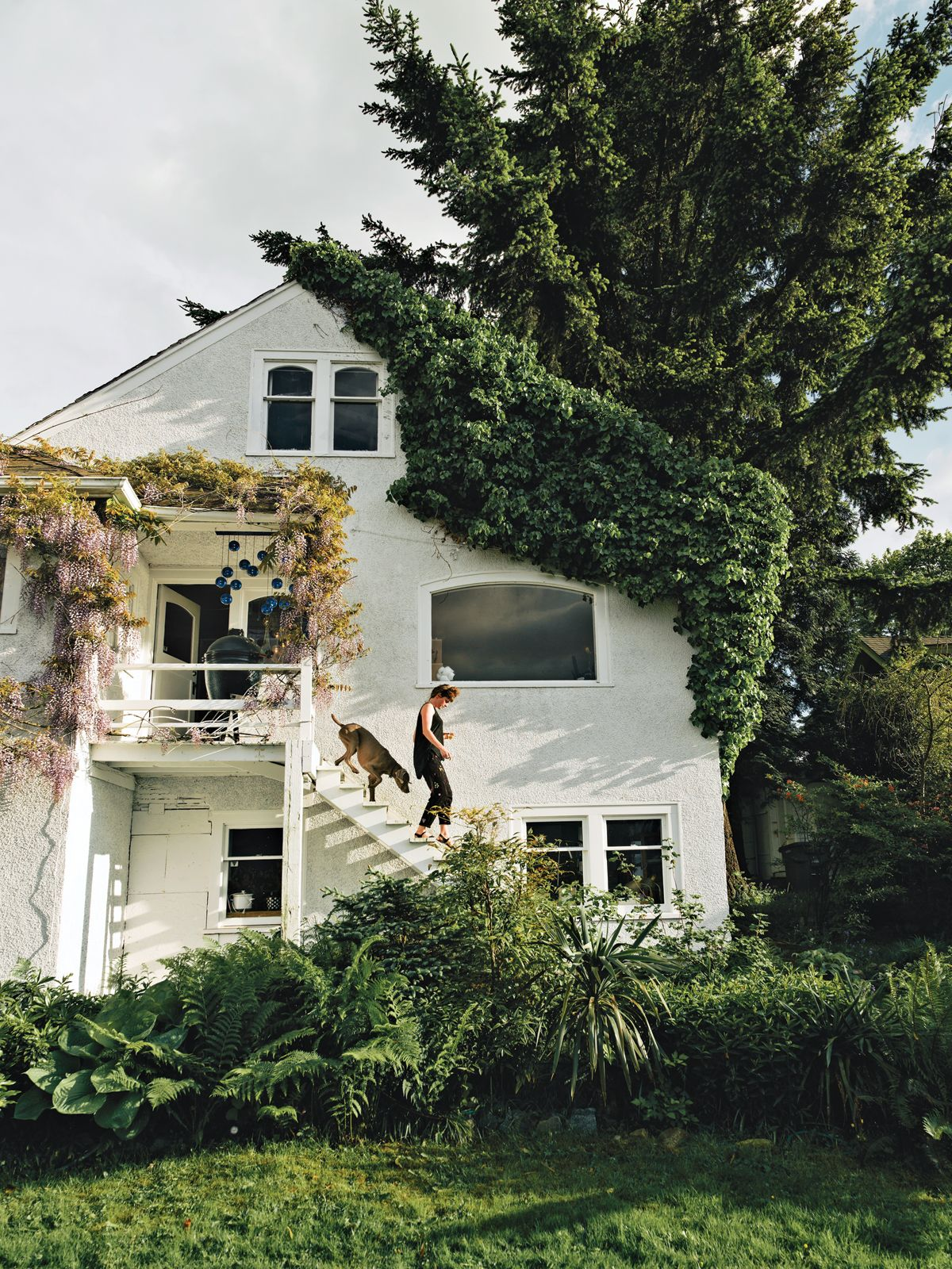 White stucco home exterior - Small second story porch - Lush green garden -  Wisteria -