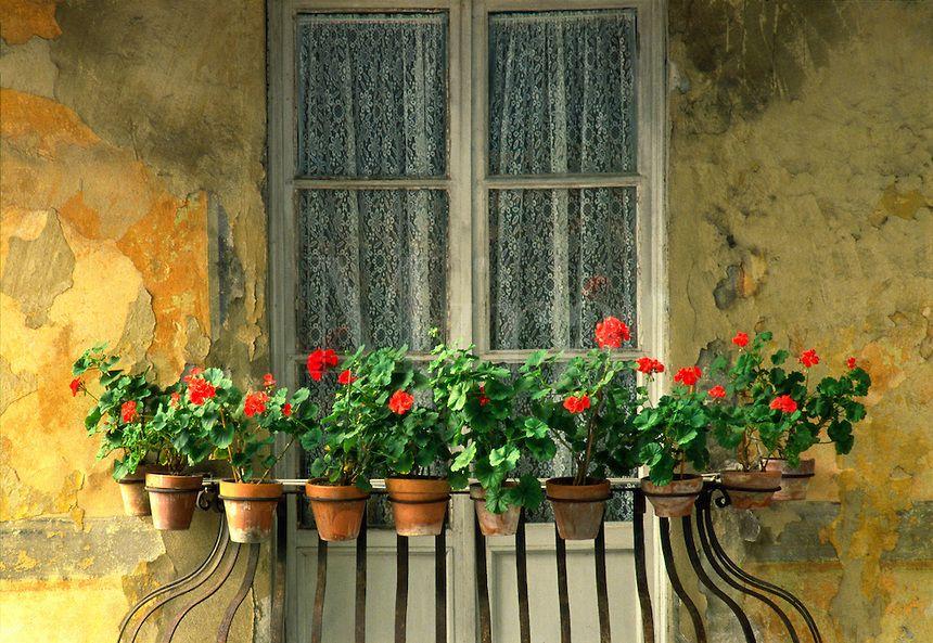 balcone ♣