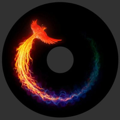 Phoenix:  Tattoo inspiratons.  Would LOVE to figuire how to get this on my arm.