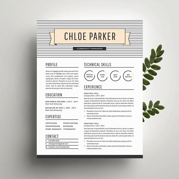 Coupon Word Template Professional Resume Template And Cover Letter Template For Word .