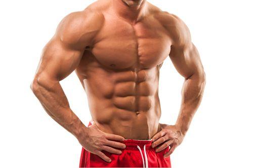 Muscle Build Gain Mushroom