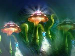 mushroom idea 2