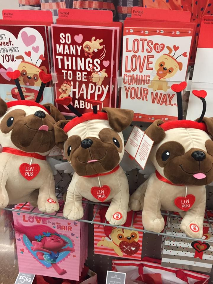 Pug Valentines at King Soopers in Colorado | gifts for the pug lover ...