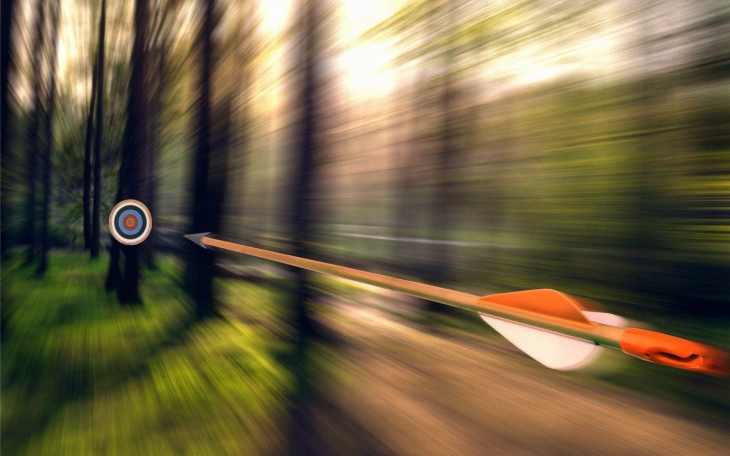 bow and arrow wallpaper Forest, Arrow, Target wallpapers