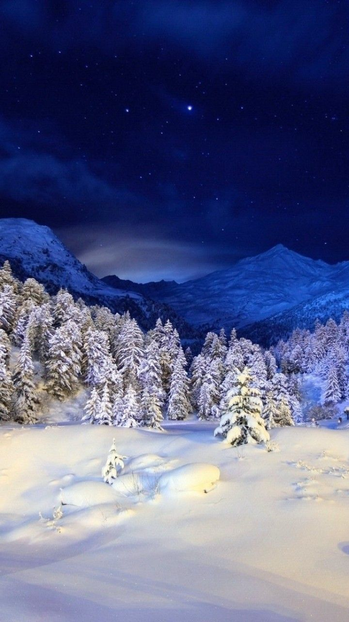 Winter snow forest 3D Android smartphone Wallpaper