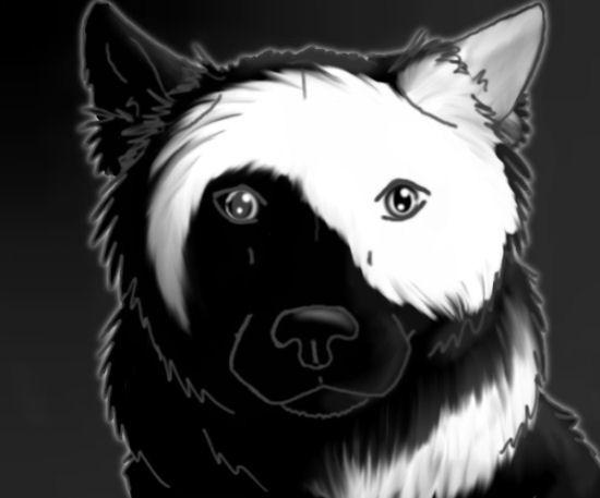 yin yang tumblr - Buscar con Google   Diseños para hacer ...