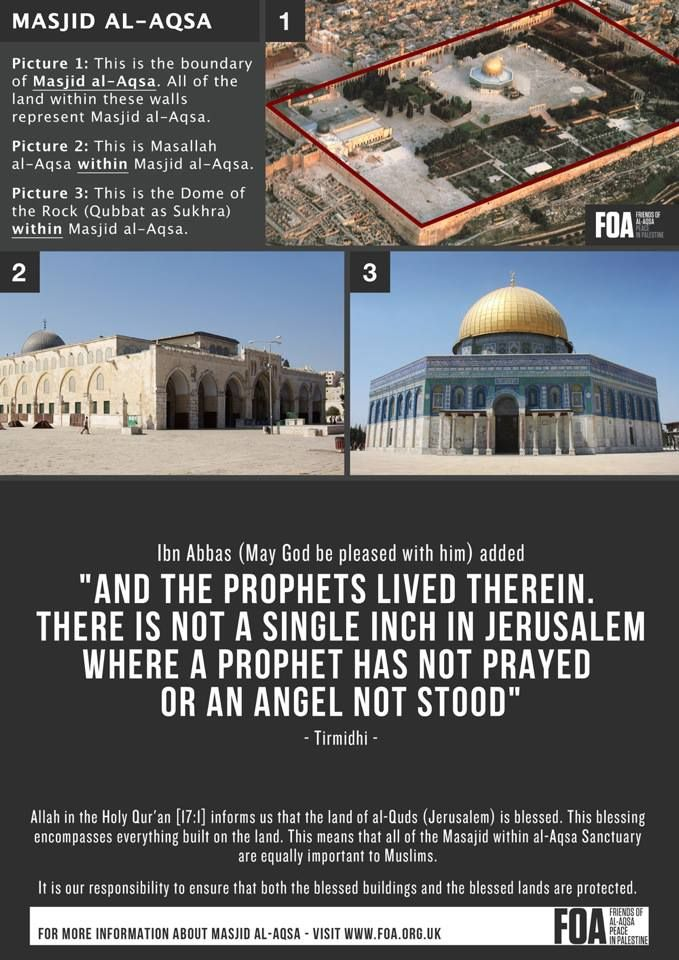 Do You Know Al Aqsa Please Like And Share The Image To Help Raise Awareness About Masjid Al Aqsa More Info Http Foa Org U Dome Of The Rock Masjid Mosque