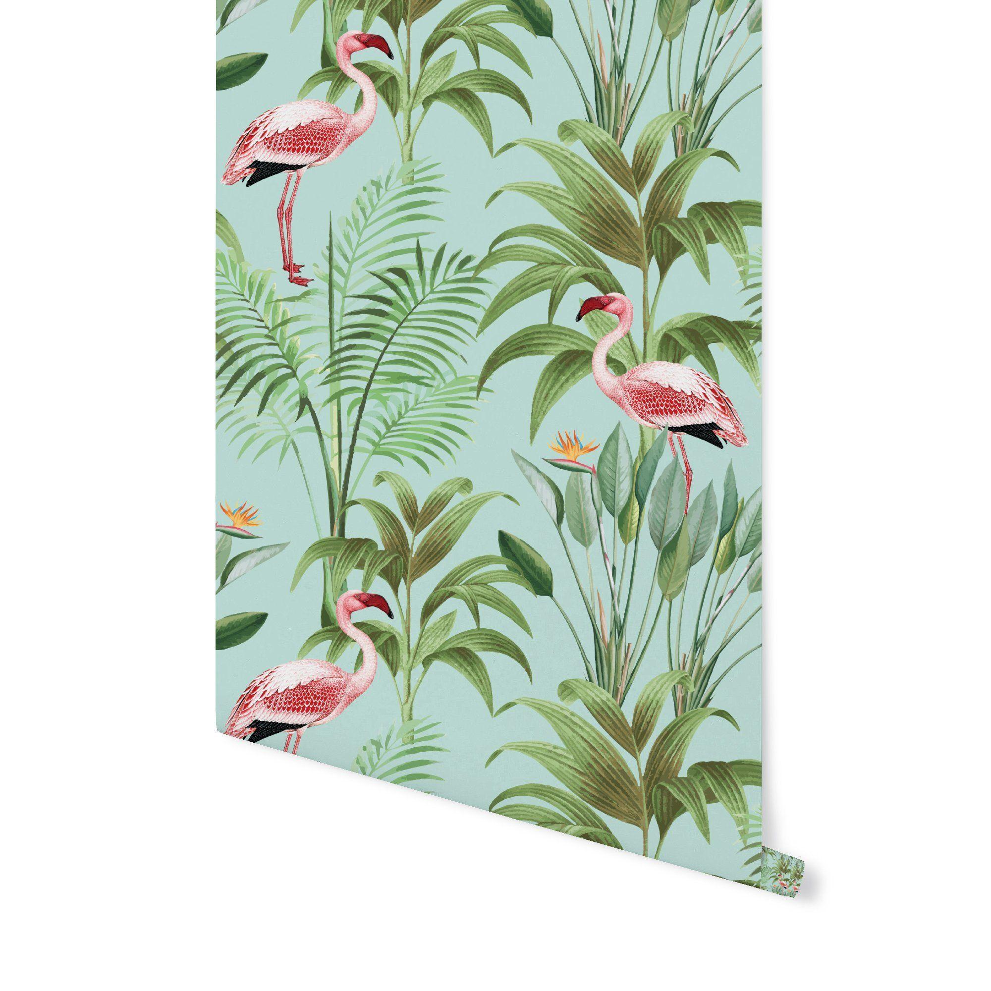 Tropical Flamingo Flamingo Wallpaper Peel And Stick Wallpaper Tropical