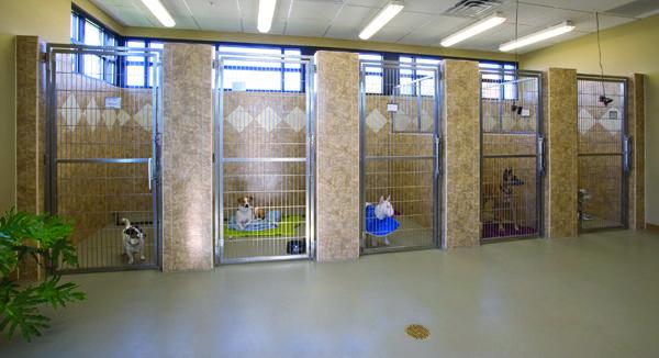 Rolled Rubber Flooring For Dog Kennels