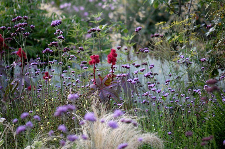 The Artful Gardener (Peter Janke's Garden, Hilden, Germany. Images by...)