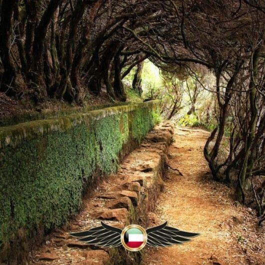 Madeira Island Portugal جزيرة ماديرا البرتغال مجموعه من الجزر وعاصمتها فونشال تقع في شمال المحيط الأطلسي و تعد المنطقة الأبعد Country Roads World Country