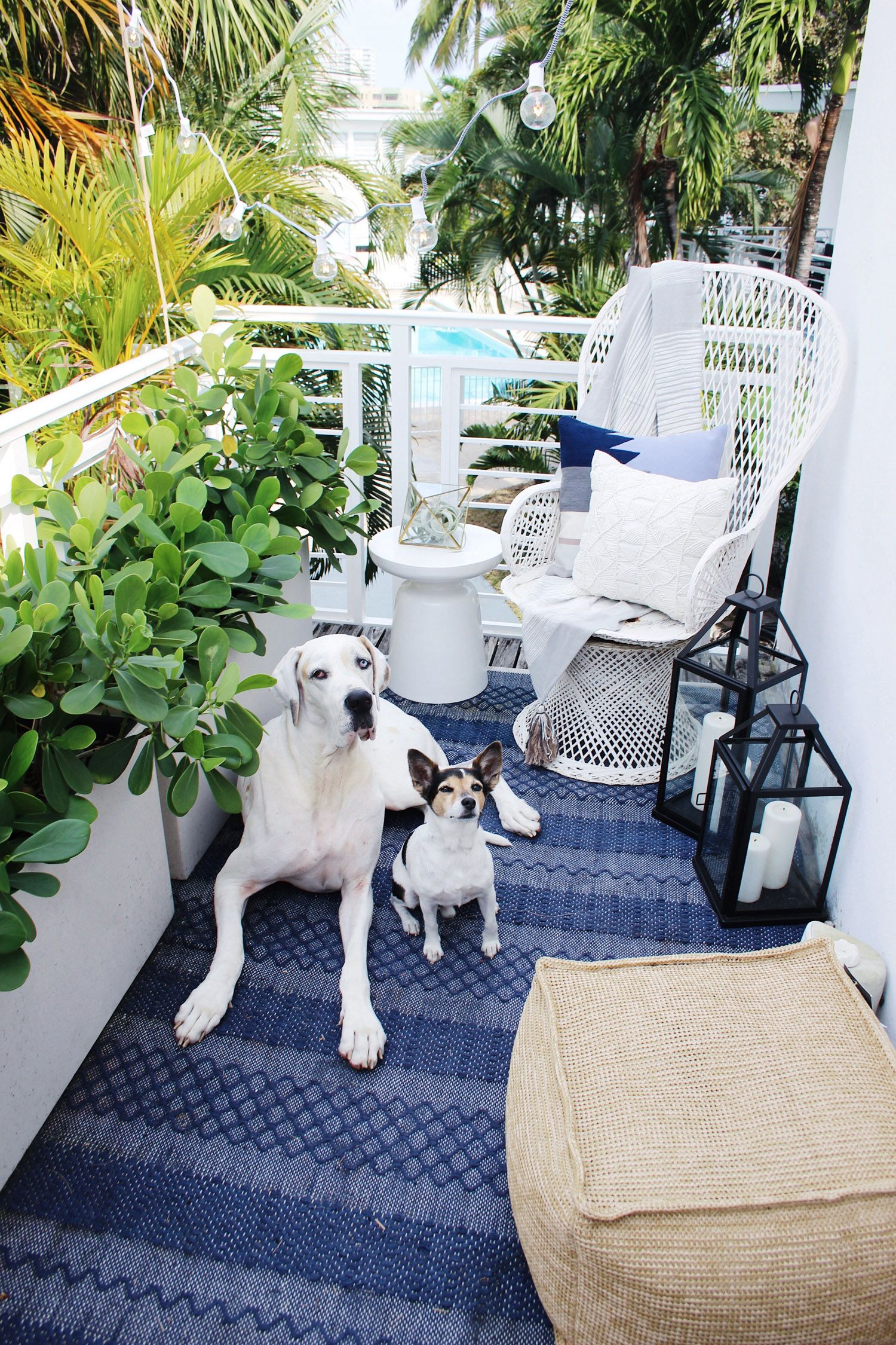 Very cute balcony! | Miami art deco, Miami residential ...