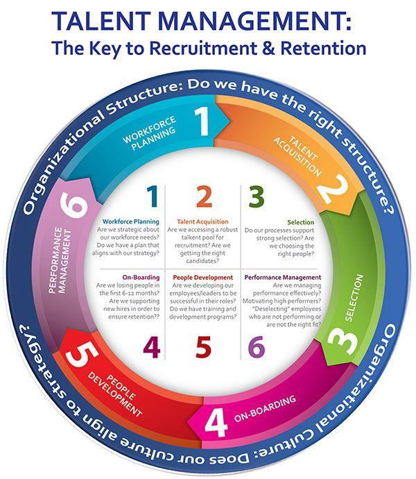 Coaching Mentoring Training Google Search Management Infographic Talent Development Talent Acquisition