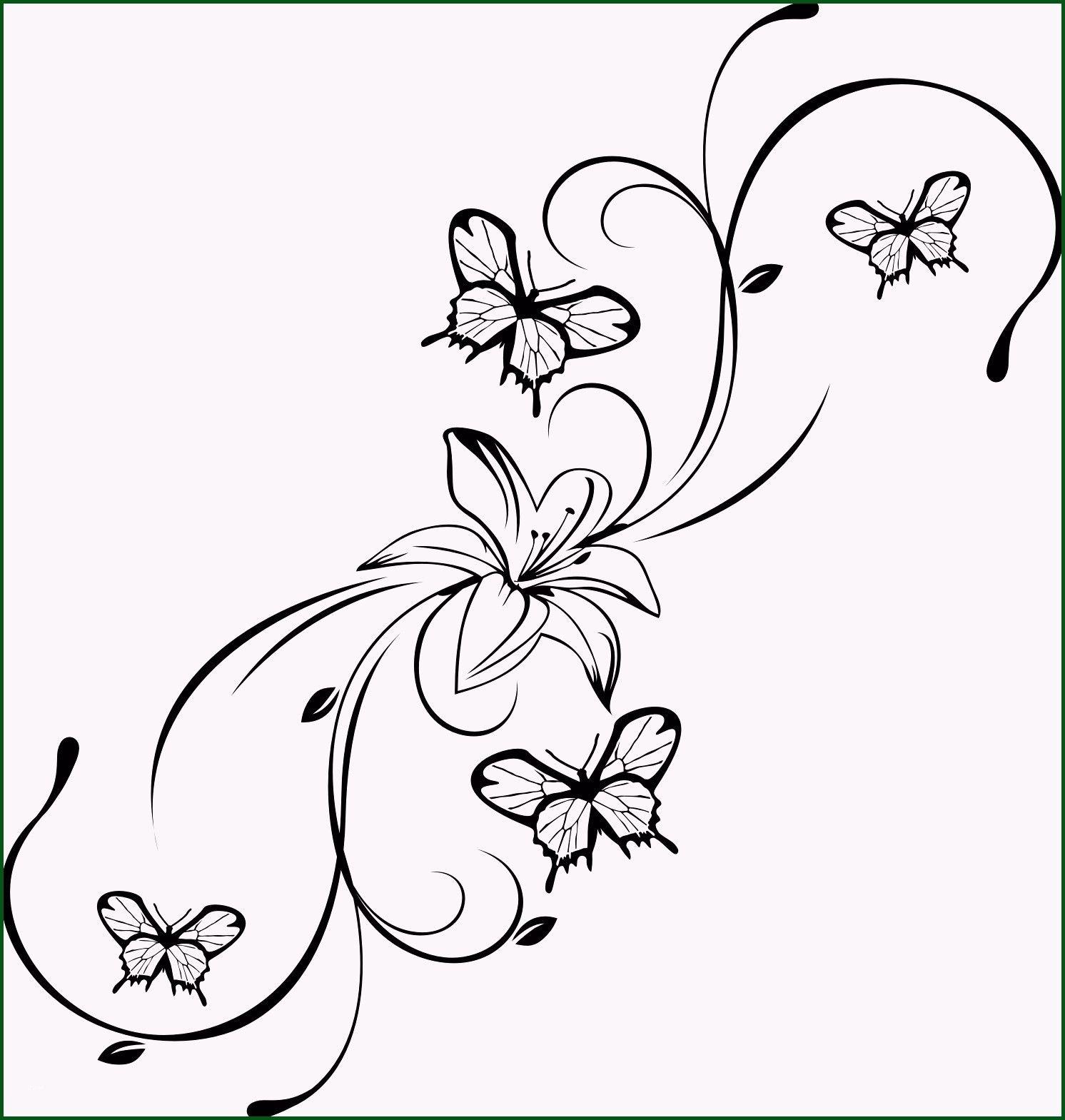 Neu Schmetterling Vorlagen Malvorlagen Malvorlagenfurkinder Malvorlagenfurerwachsene Flower Drawing Butterfly Tattoo Flower Tattoo Designs