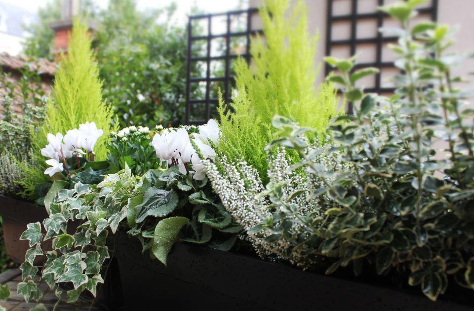 Jardini re fleurie livr e domicile pour un balcon fleuri en toute - Idee composition jardiniere exterieure ...