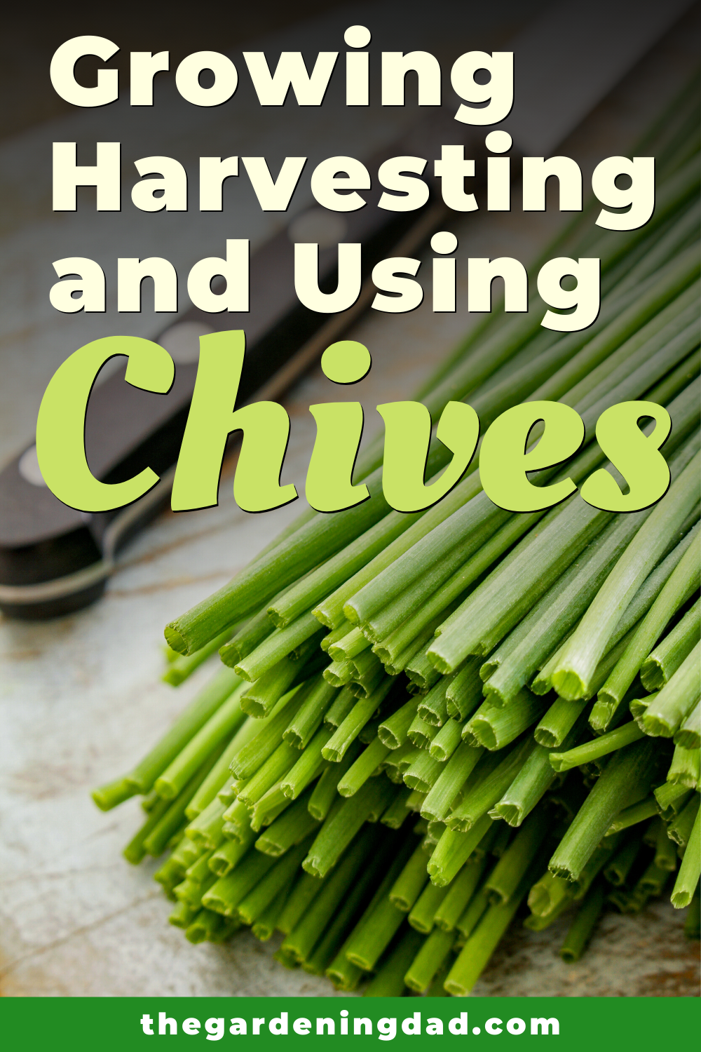 10 Proven Tips How To Grow Chives The Gardening Dad Growing Chives Food Garden Chives Plant
