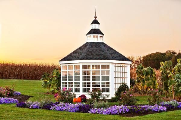 The Garden Shed Greenhouse 12\u0027 x 12\u0027 Centerpieces, Window and Third